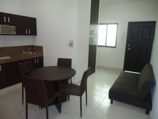 Excellent apartment a few steps from the beach - Playa del Carmen vacation rentals