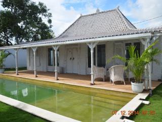 Bali Canggu Berewa Beautiful villa of Javanese and colonial style - Canggu vacation rentals