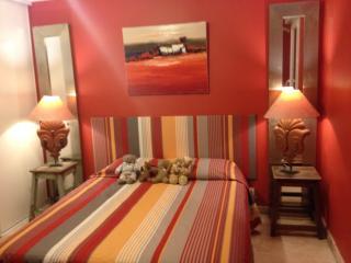Appartement de Standing au coeur du Luberon - Oppede vacation rentals