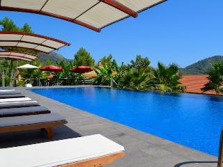 Mira Park Luxury Apartments in Gocek - D4 - Gocek vacation rentals