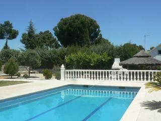Villa with private swimming pool - Madrid Area vacation rentals