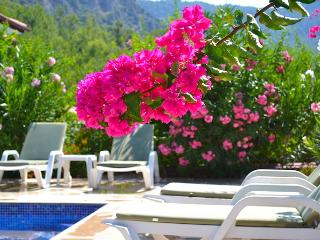 Holiday Villa Helena 5 in Göcek Terrace Life - Gocek vacation rentals