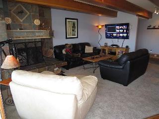 Anchorage West 105 - Dillon vacation rentals