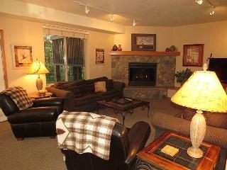 Cross Creek 100 - Frisco vacation rentals