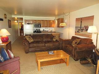 Lake Dillon Condos 105 - Dillon vacation rentals