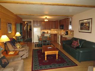 Lake Dillon Condos 203 - Dillon vacation rentals