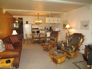 Lake Dillon Condos 211 - Dillon vacation rentals