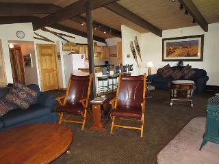 Lake Dillon Condos 302 - Dillon vacation rentals