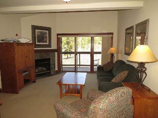 Oro Grande 415 - Summit County Colorado vacation rentals