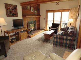Snowscape 53, Building 4 - Summit County Colorado vacation rentals
