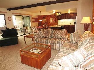Timberline 13 - Dillon vacation rentals