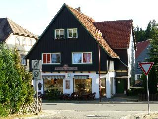 Nice Condo with Central Heating and Satellite Or Cable TV - Schierke vacation rentals