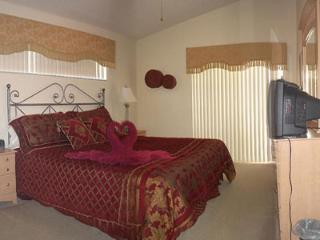 3bd 2bth budget south facing pool/games room/wifi - Kissimmee vacation rentals
