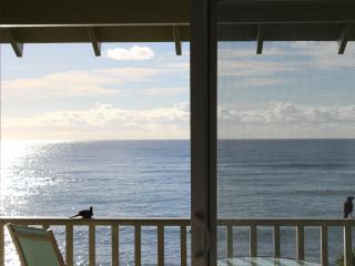 KAPAA SANDS DIRECT OCEAN FRONT - Kapaa vacation rentals