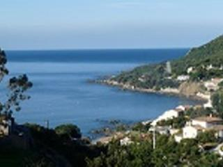 LOCATION 2F4 TIUCCIA CORSE SUD BORD DE MER 9pers - Tiuccia vacation rentals