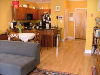 Spacious, upscale 1 bdrm sleeps 2 - Greater New York Area vacation rentals