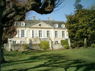Gîte du Château de la Gavolerie - Besse-sur-Braye vacation rentals