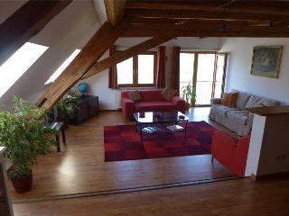 Wutachschlucht Apartment Sleeps 6 - Wutach vacation rentals