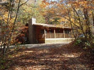 Shady Grove – Quiet Mountain Cabin with Easy Access and Fire Pit -- Less than 15 Minutes to Fly Fishing and Harrahs Casino - Dillsboro vacation rentals