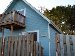 Dogs Love the Beach - Seashell Beach Cottage - Pacific Beach vacation rentals