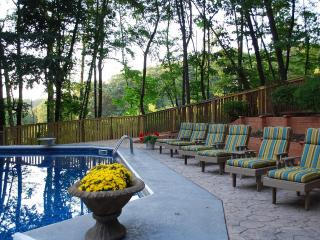 Gorgeous Cabin * Private POOL * Fire-pit * Florida room & upscale furnishings* - Lancaster vacation rentals
