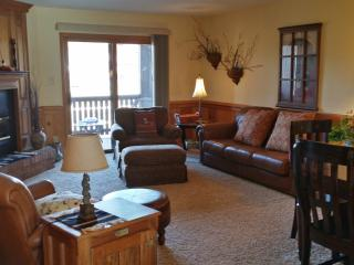 Deal*$99/nt*View of Ski Slopes*Nice*Wifi* - Angel Fire vacation rentals