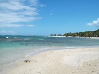 Puerto Plata, on the beach, Reina Del Mar Resort - Puerto Plata vacation rentals