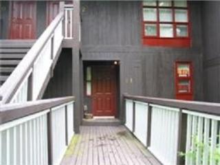 Jib Stay Condo on Beautiful Penninsula Lake, Muskoka - Huntsville vacation rentals