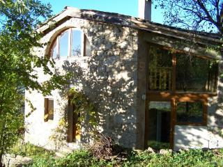 Nice Gite with Internet Access and Central Heating - Gluiras vacation rentals