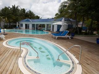 True Beachfront Estate for Families & Large Groups, 2 Pools & Jacuzzi, Close to All the Action - Pelican Key vacation rentals