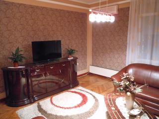 Comfortable apartmant, 2 Rooms 60m2 - Belgrade vacation rentals