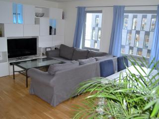 Near Oslo central station - modern Oslo Apartment - Oslo vacation rentals