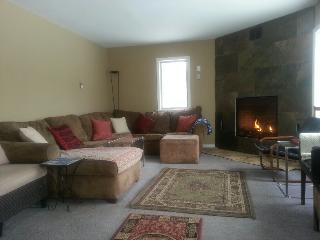 Hunter Mt~REDUCED NOW! Best Deal~5 min to Slopes! - Hunter vacation rentals