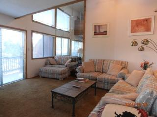 Cozy 3 bedroom Apartment in Angel Fire - Angel Fire vacation rentals