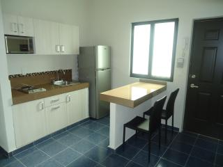Great Apartment 2 blocks from the beach - Playa del Carmen vacation rentals