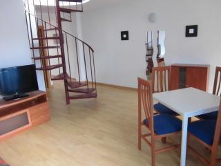 Penthouse duplex in Torremolinos - Torremolinos vacation rentals