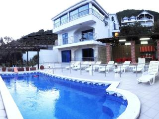 7 bedroom Villa with Internet Access in Denovici - Denovici vacation rentals