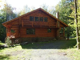 Beautiful and cozy Hunter NY  and Windham NY Log Cabin retreit - Preston Hollow vacation rentals