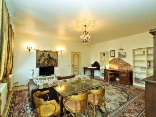 Luxury apartment on Nevsky prospect 88 - Saint Petersburg vacation rentals