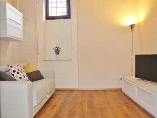 Bright House with A/C and Television - Lucca vacation rentals