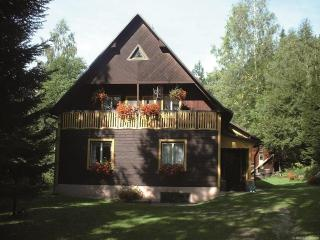 Holiday house in quiet surroundings - Benecko vacation rentals