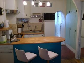 Lovely Vacation Pied-a-Terre in Paris - Paris vacation rentals