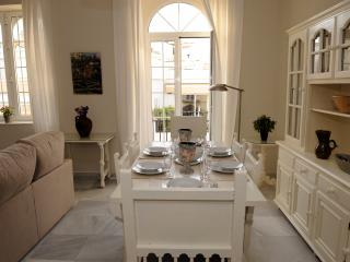 CENTRAL, LUMINIIUS AND HUDGE 3 BEDROOMS APARTMENT - Seville vacation rentals