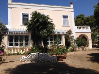 Lovely Villa with Internet Access and A/C - Poseidonia vacation rentals