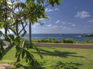Hale Haloko Kaiin Poipu - Oceanviews and just steps to the beach - Koloa vacation rentals