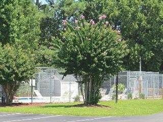 Glens Bay Retreat Quiet Secluded Beachgoer Paradise- 1356-203D - Clemson vacation rentals