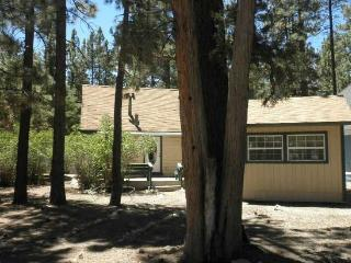 """The 4 Sierras Cabin"": The perfect cozy getaway - Big Bear City vacation rentals"