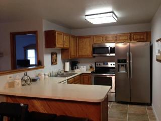 Beautiful Condo in Summit County - Silverthorne vacation rentals
