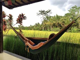 Lovely rice field house in Ubud - Ubud vacation rentals