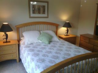 Beautiful Condo Central to all of Cape Coral - Cape Coral vacation rentals